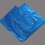 Blue liner 1 copy